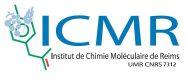 logo-icmr-umr7312
